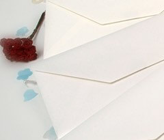 DL Wedding Envelopes